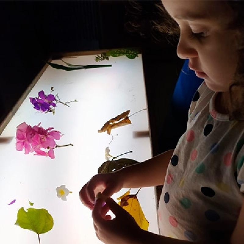 Creche Infantil Particular Valores Barra Funda - Escola Creche