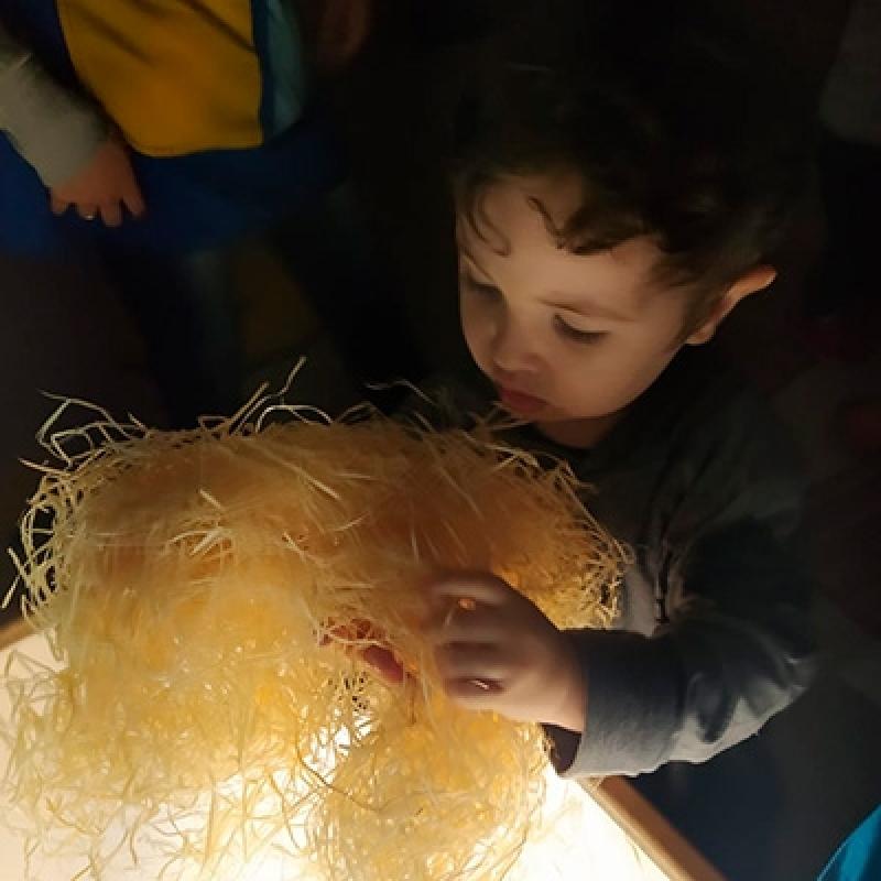 Onde Encontro Creche Infantil Bela Vista - Creche de Criança
