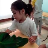 aula para educação infantil Vila Firmiano Pinto