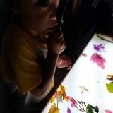 escola particular infantil integral Vila Moraes