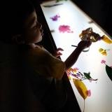 onde encontrar escola particular infantil integral Vila Moraes