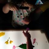 procuro por escola particular educação infantil Vila Monte Alegre